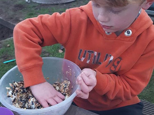 Redgate Primary make bird feeders from oranges
