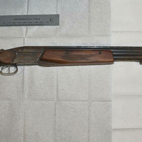 Merseyside Police have recovered three firearms from a vanin Bootle