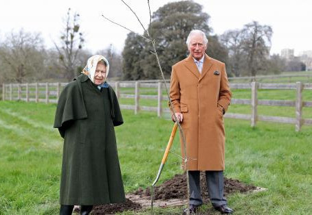 The Queen's Green Canopy (QGC) is now offering free trees to thousands of schools and communities
