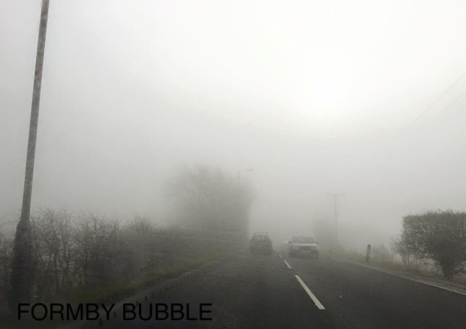 Foggy Ince Woods.jpg