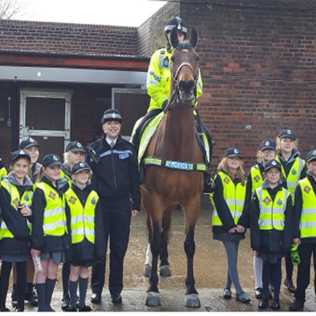 A Southport school were taken to visit the Merseyside Police Mounted unit