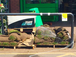 Free turf giveaway TODAY In Formby