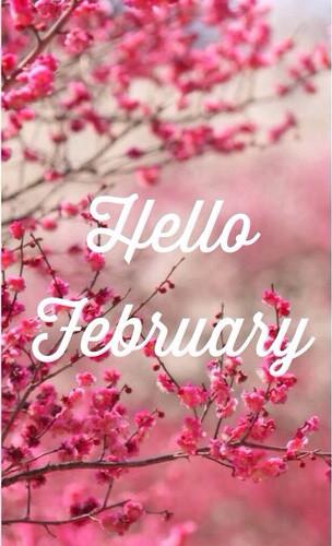 hello-february-f8.jpg