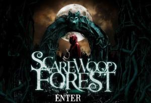 scarewood-300x205.jpg