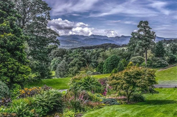 Arnold Hague won first prize in the Southport Flower Show 2014 photography compe