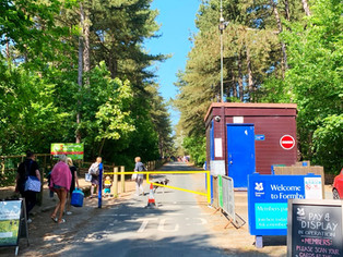 Please do not attempt to come to Formby by car, miles of traffic jams and NT car park closed