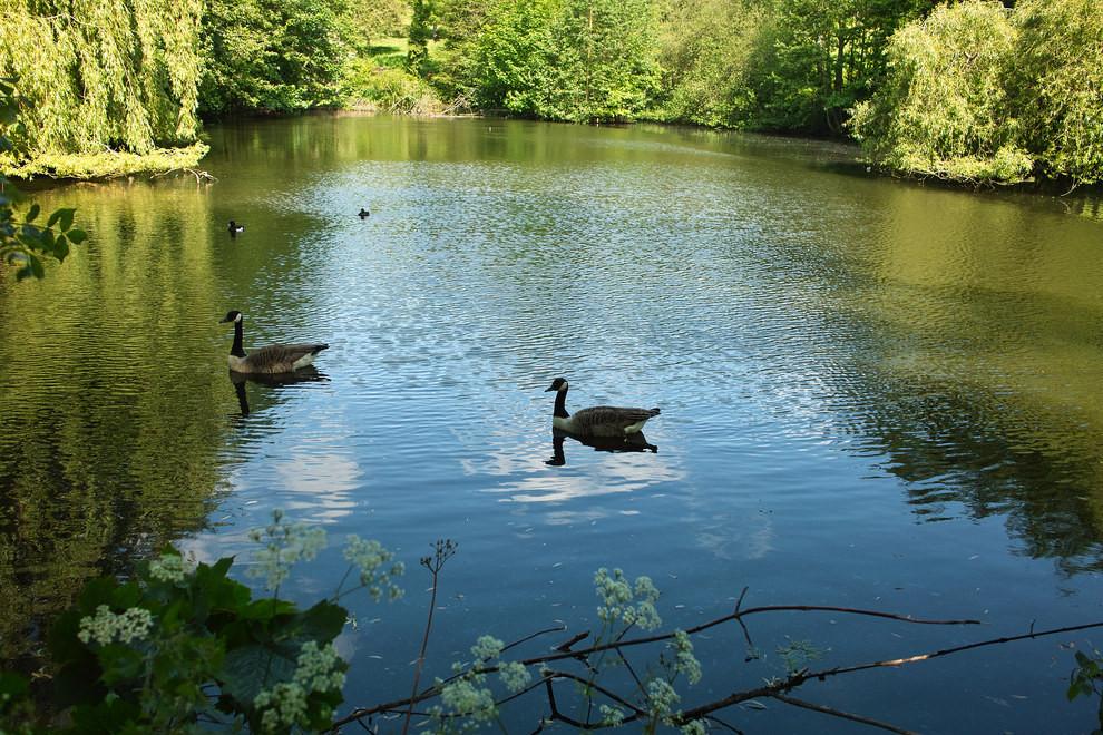 Waterlow Park, London.jpg