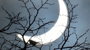 Skygazers will be treated to a partial solar eclipse over the UK this morning just after 10am