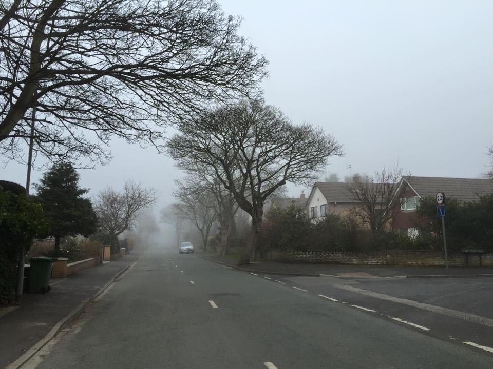 Bushbys Lane in fog.jpg