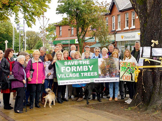 Save our Village Trees meeting had a great response in the village today