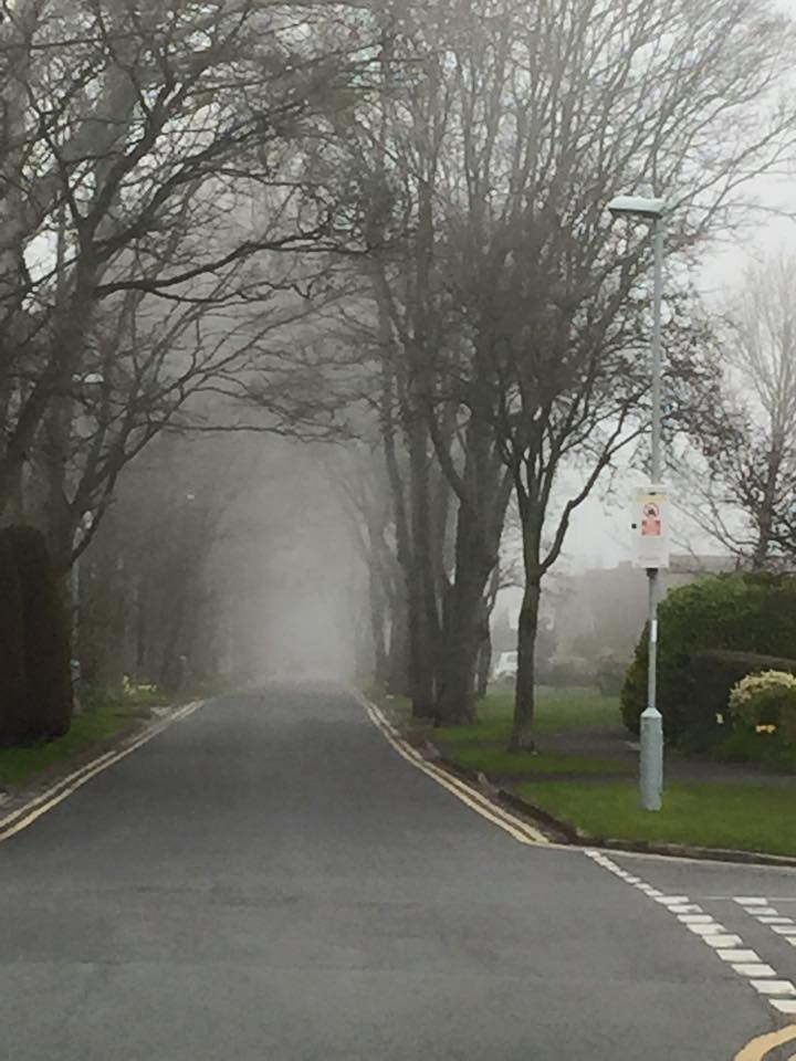 Larkhill Lane in the fog.jpg