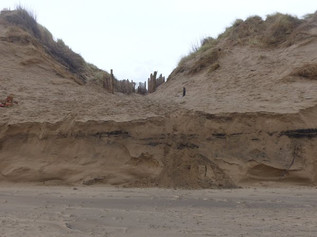 National Trust Formby issue warnings of dangerous cliff-like edges