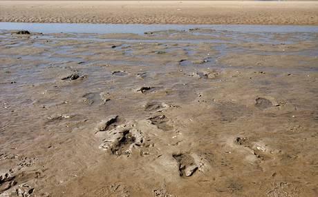 ancient-footprints-Formby
