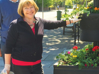 Cllr Pat Gwyther resigns from her post on Formby Parish Council