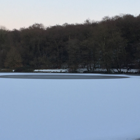 Don't risk your life by Skating or Walking on wild ice in Sefton Nature Reserves