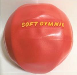 ソフトギムニクボールを使った運動をします