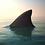 "Thumbnail: ""Shark Tank"""