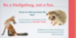 hedgehog-principle-brand-transform.png