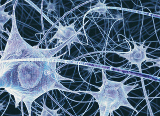 How Can I Grow New Nerve Cells?