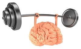 Smart Brain Program - Computerized Cognitive Therapy