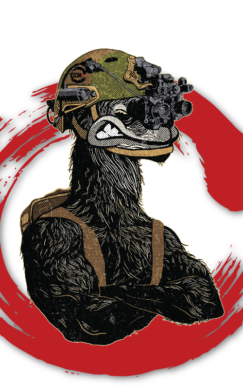 Colored%20llama-red%20(1)_edited.png