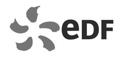 logo-edf_edited_edited
