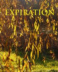 Ressoucement à Vallisis Quillan stages Languedoc-Roussillon sources sérénité nature pure vacances harmonie danse location dôme géodésique stages artistiques spirituels argile immersion nature, retraite lieu sauvage et unique et magique, chant des voyelles gaiayoga, magie, méditation