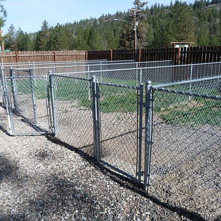 Small dog exercise yard