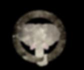 LogoOnlyRGB.png