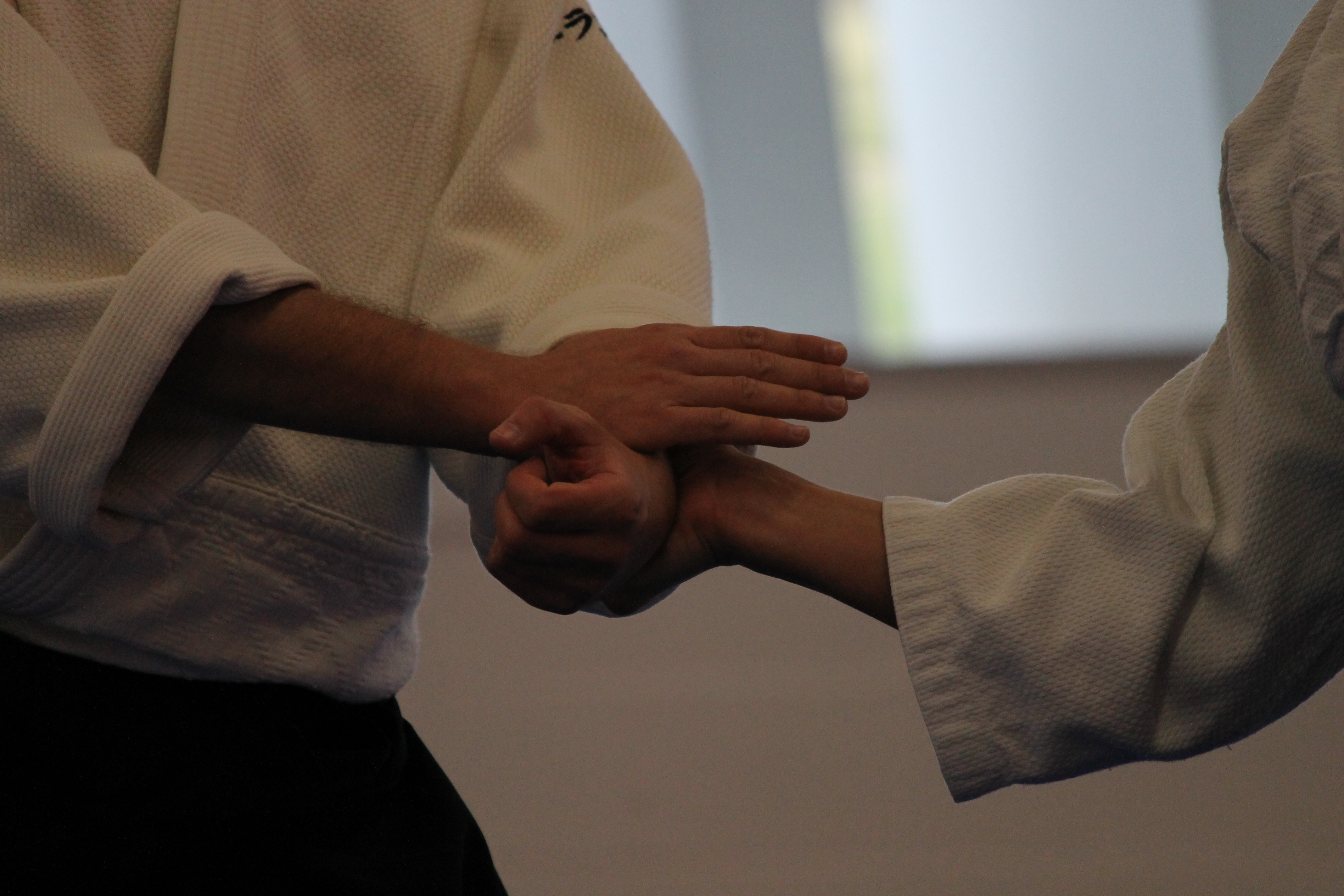 aikido Lille