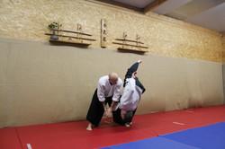Aikido shiho nage