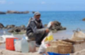 morocco, essaouira, fisherman, seafood