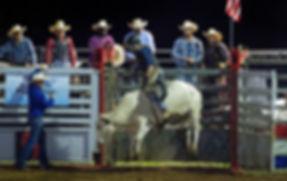 bull rider, rodeo, cowboys