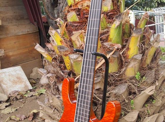 semi-hollowelectric bass (2).jpg