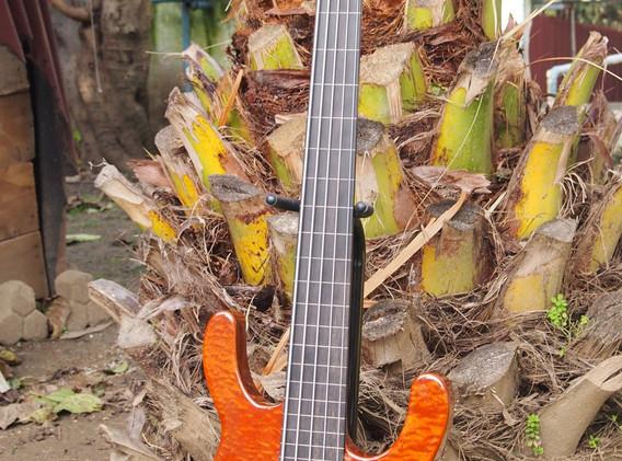 semi-hollowelectric bass (4).jpg