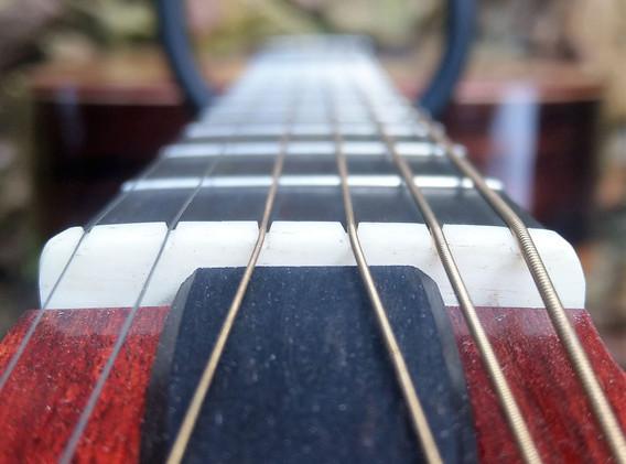OM acoustic (4).jpg