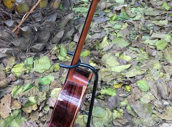OM acoustic (2).jpg