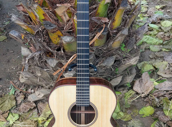 OM acoustic (3).jpg