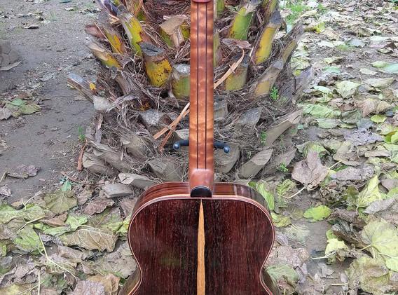 OM acoustic (1).jpg