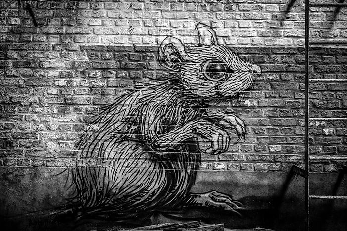 ネズミ7.jpg