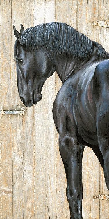 Percheron on Barn Door