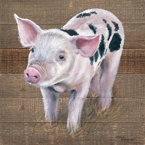 The Piglet