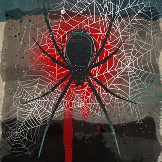 wildshape-spider.jpg