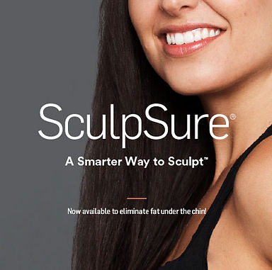 sculpsurebox.jpg