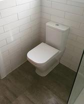 Quality Toilet Upgrade