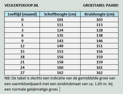 Groeitabel veulen - Veulentekoop.nl