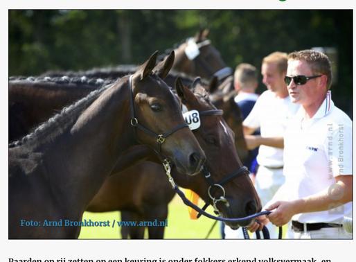 Horses.nl organiseert digitale veulenkeuring