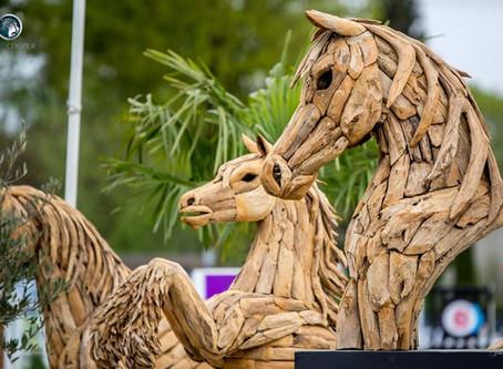 PaardenRaad 2018