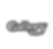 Gallery Icon White.png