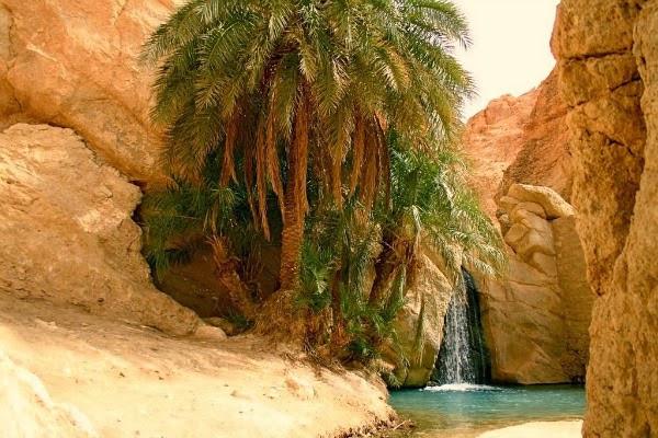 tunez 04.jpg
